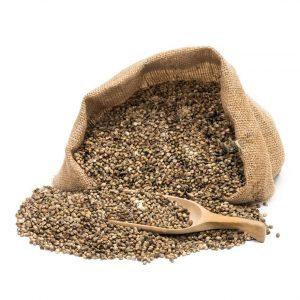 Organske sjemenke konoplje